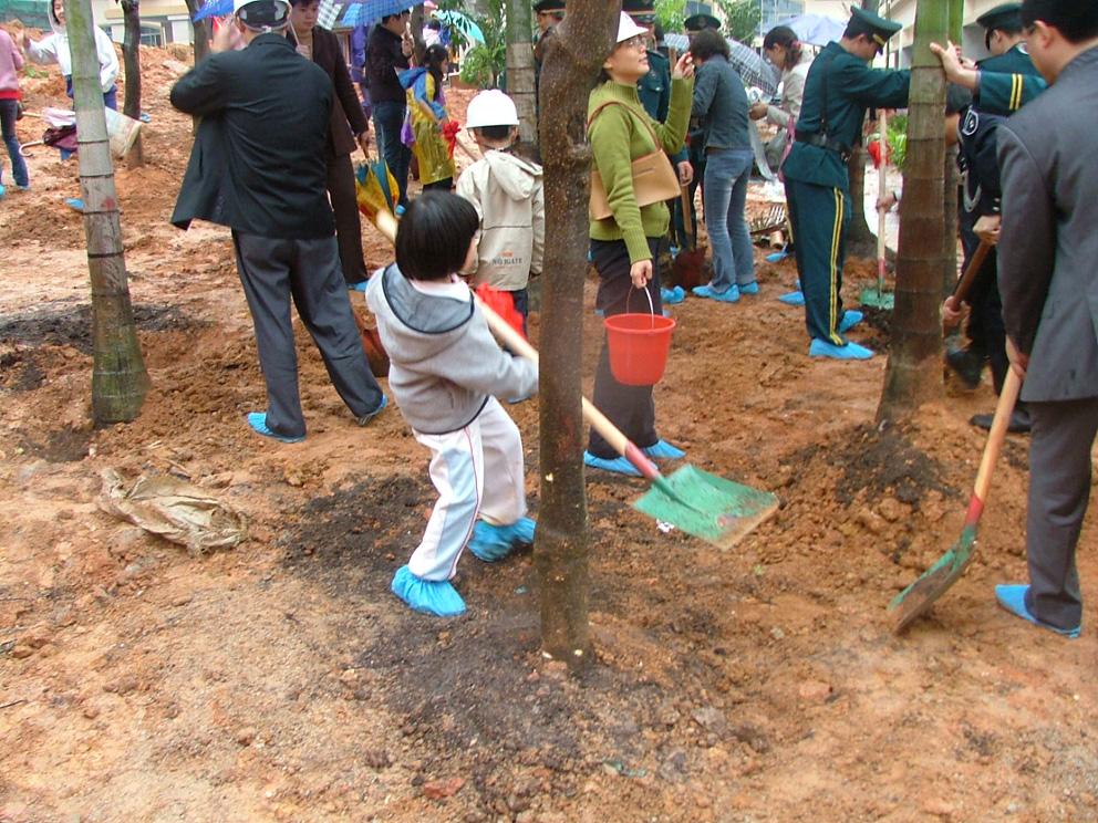 社区植树节活动图片