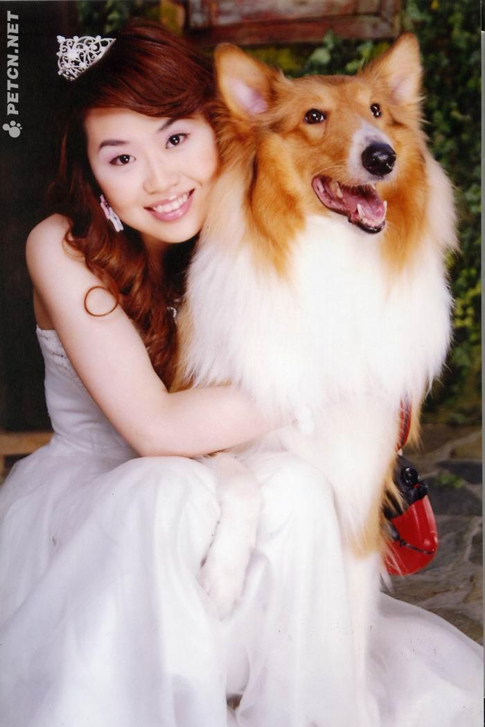 美女与动物 深圳房地产信息网论坛
